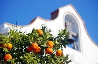 No en lo turístico? Cómo vivir como un local en Málaga