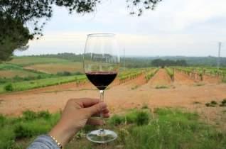 3 viajes por carretera españoles para los amantes del vino