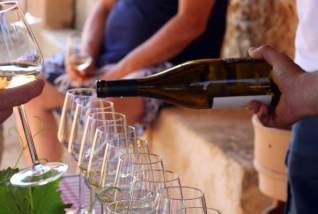 Un día con Mallorca Wine Tours