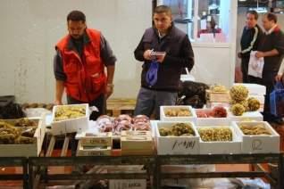Visitar Mercamadrid: El segundo mercado de pescado más grande del mundo