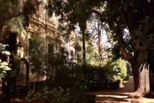 Disfruta de la naturaleza en estos hermosos parques de Granada