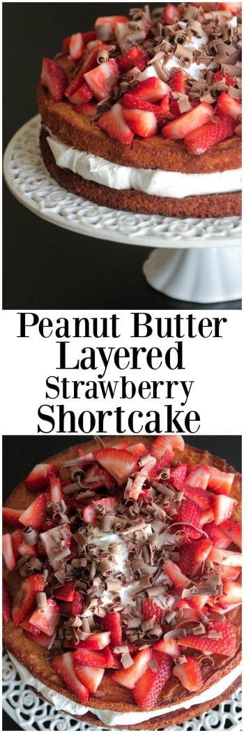 """/""""hacer pastel de mantequilla de maní /'haerae Design Studio Quilters Tela de algodón orgánico"""
