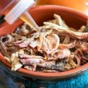 cerca de la salsa de barbacoa de Carolina del Norte en cerdo tirado