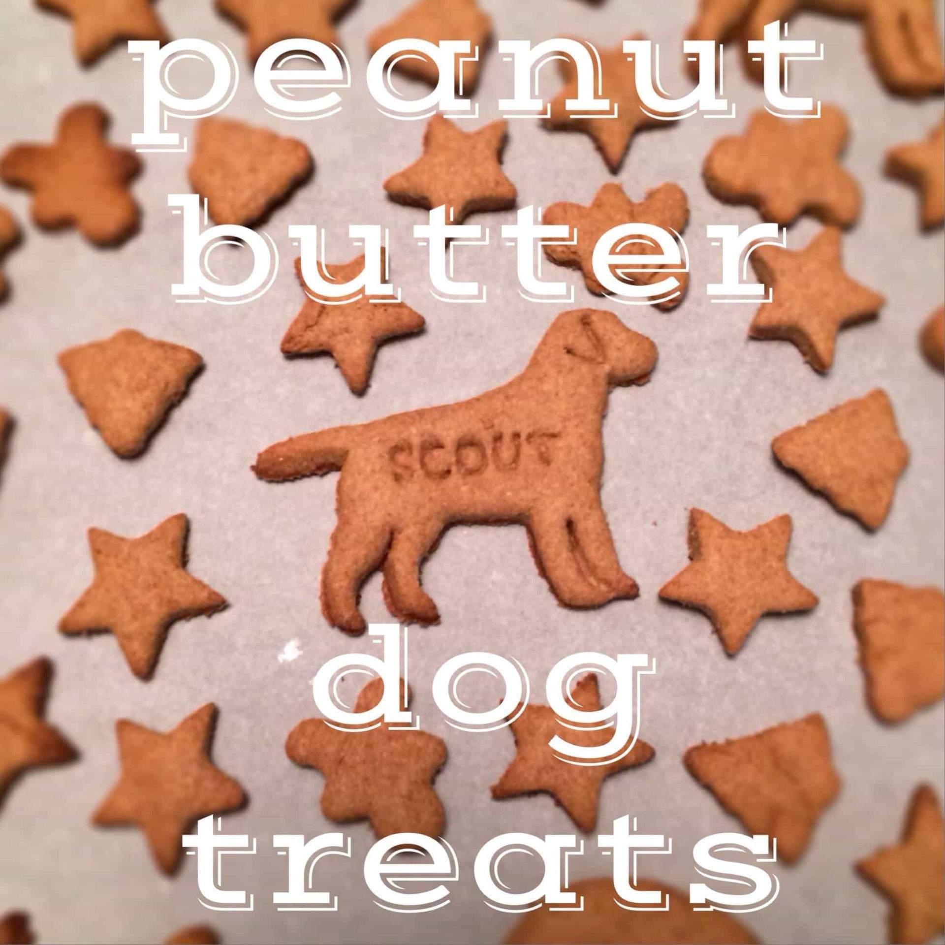 golosinas para perros con superposición de texto: golosinas para perros con mantequilla de maní