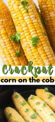imagen de pin de maíz en la mazorca