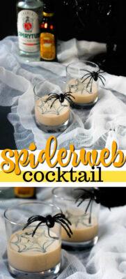 imagen de pin de cóctel de tela de araña