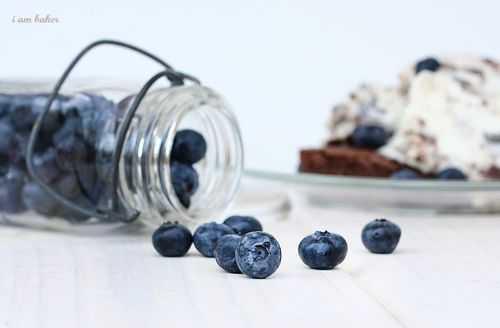 IMG_5234.blueberrybrownieicecream