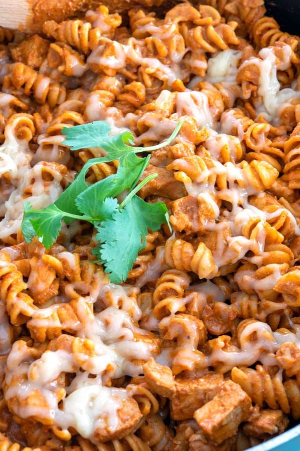 Close up of enchilada pasta