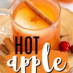 imagen de pin de sidra de manzana caliente